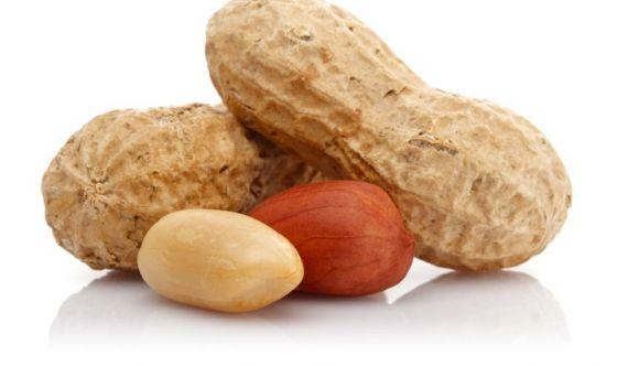 Le arachidi sono legumi