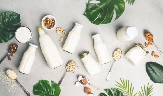 Bevande vegetali: cosa sono?