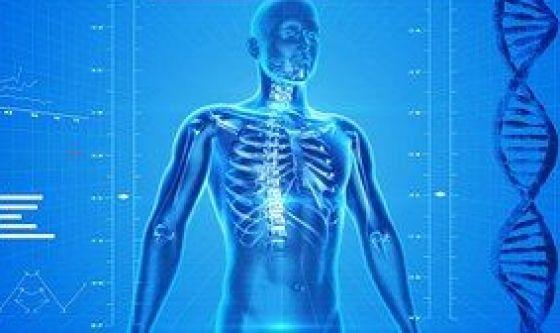 Densitometrica ossea almeno ogni due anni