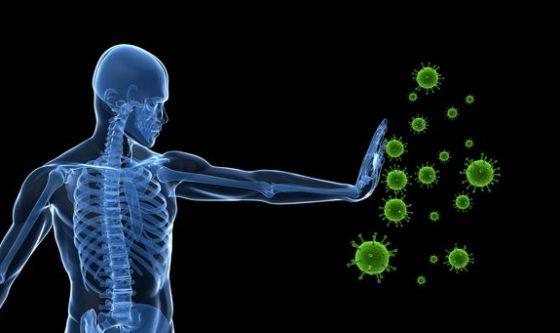 Sistema immunitario: come rinforzarlo?
