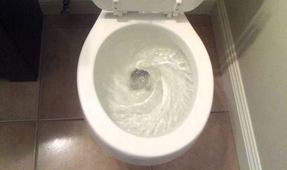 Il mitico wc australiano