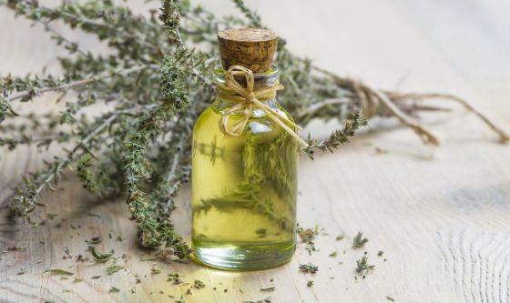 L'olio essenziale di origano