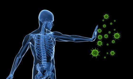 Rinforza il sistema immunitario