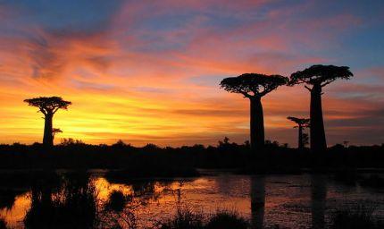 Pesci - Natura e avventura in Madagascar