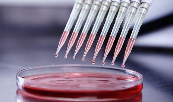 Sottoporsi agli screening ed eventualmente ai test genetici