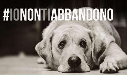 La campagna di sensibilizzazione: #IONONTIABBANDONO