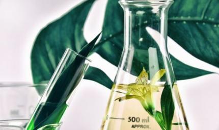 È boom di cosmetici green: sai come sceglierli?