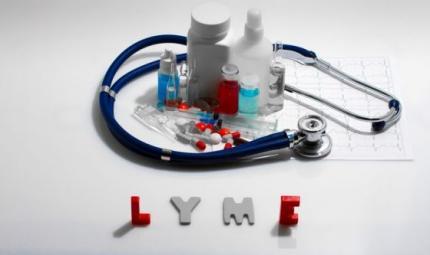 Malattia di Lyme: anche Bella Hadid e la madre colpiti