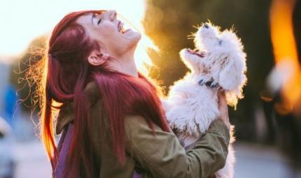 I cani comprendono il nostro linguaggio