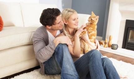 Gatti, attratti da chi li evita. Ecco il perché