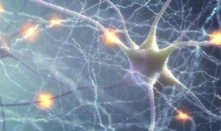 Stato vegetativo persistente e nuovi orizzonti terapeutici