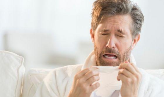 Le allergie più diffuse: dalla polvere al gatto