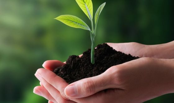 Cinque idee per salvare il pianeta