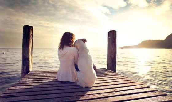 Questione di empatia: il cane è ipersensibile alle emozioni