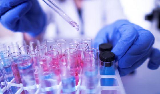 Tumori: due molecole per il rene