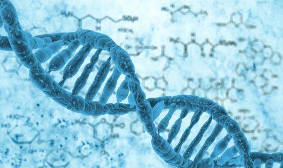 Analgesia congenita, scoperto il genere responsabile