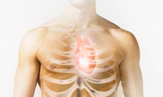 Funziona il trapianto con il cuore resuscitato