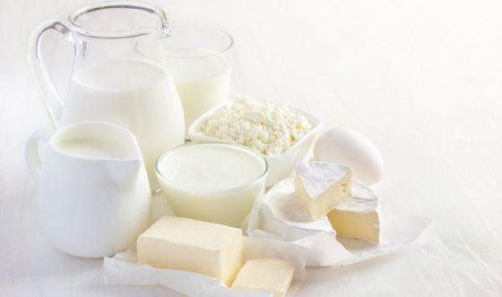 I latticini rinforzano davvero le ossa, parola di scienza