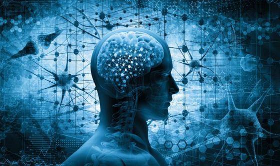Più luteina per mantenere giovane il cervello