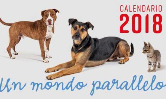 Cani over: il calendario 2018 degli amici a quattro zampe