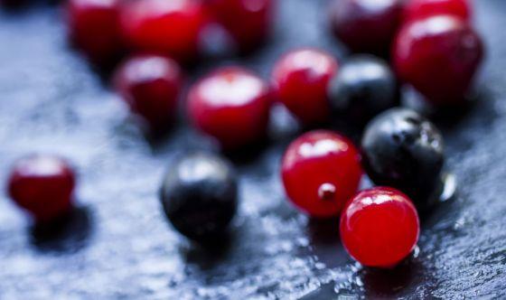 Mirtillo: rosso o nero?