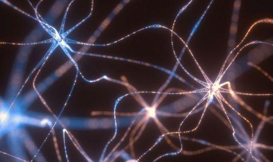 Danni neurologici da Covid