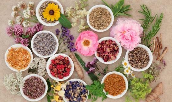 Fitocosmesi: le erbe al servizio della bellezza
