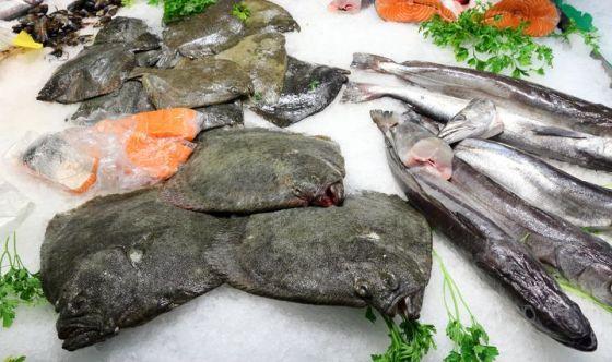 Pesce: nei mercati rionali occhio alle etichette