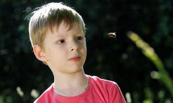 Api e vespe: come difendere i bambini