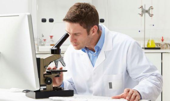 Il seme ora nasce in laboratorio
