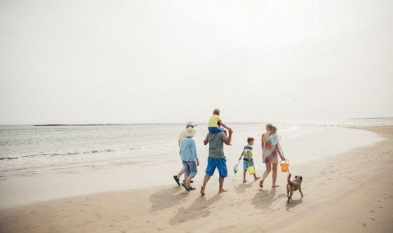 L'estate e fido in spiaggia. Ecco i consigli