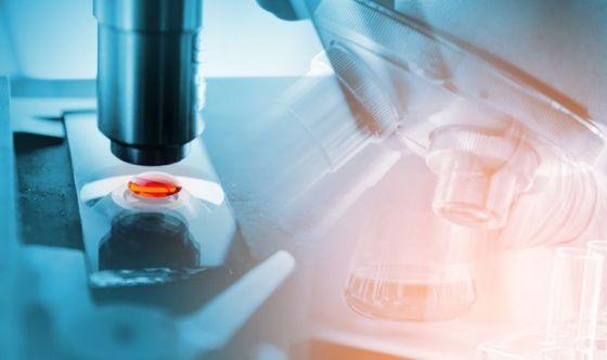 Tumori: un nuovo test per individuarli in pochi minuti