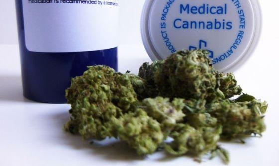Cannabis: curerà le malattie gastro-reumatologiche?
