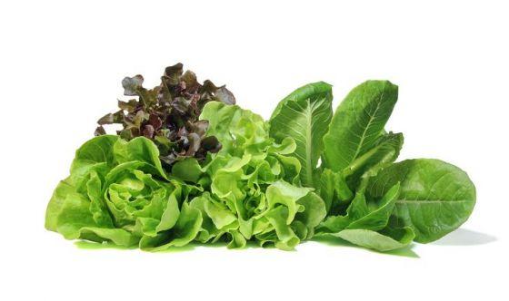 Cervello più giovane grazie all'insalata