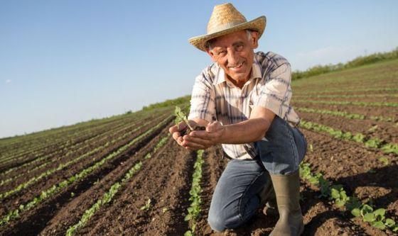 L'esposizione ai pesticidi cambia la flora orale