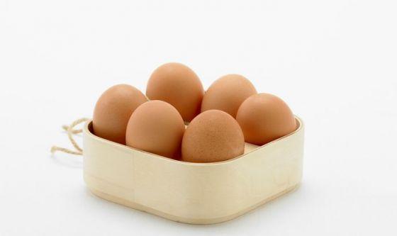 L'uovo fa bene al cervello dei più piccoli
