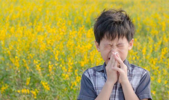 Un trattamento in grado di agire sulle cause dell'allergia