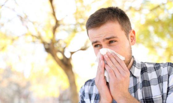 È tempo di ambrosia, arriva l'allergia
