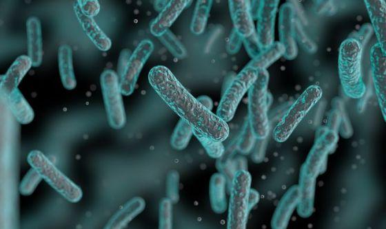 Batteri resistenti agli antibiotici? Arriva un nuovo farmaco
