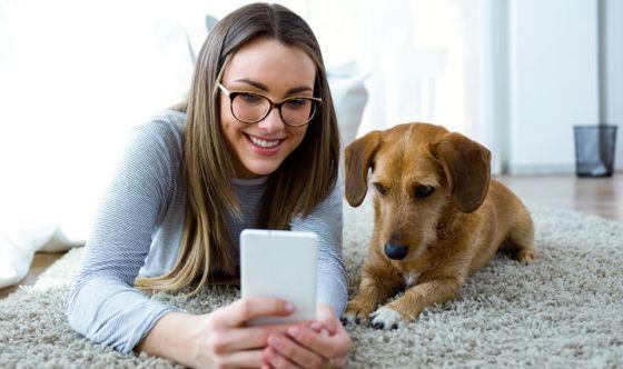 11Pets, l'app che sostituisce il libretto sanitario del pet