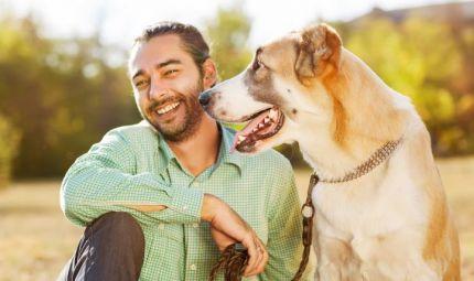 Un'assicurazione a misura di pet