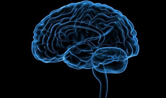 Scoperto come rianimare il cervello dopo la morte