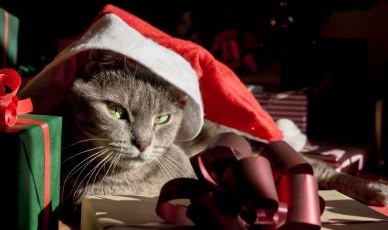 Il Natale si tinge di rosso