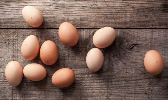 Un uovo al giorno aiuta i bimbi a crescere