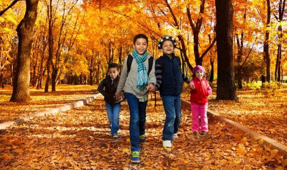 Bimbi e scuola, i rimedi naturali più adatti