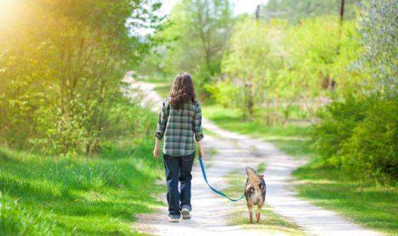 Camminare nella natura per sconfiggere la depressione