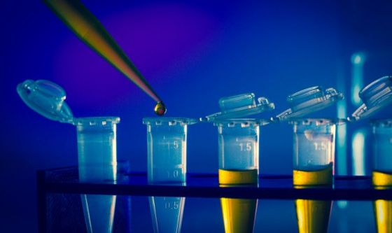 Nobel: entro 2050 immunoterapia per battere tutti i tumori