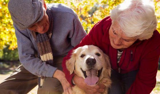 Over 65 e animali: per 9 su 10 i pet migliorano la vita
