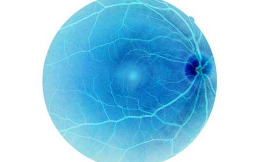 Ecco la prima retina umana realizzata in laboratorio