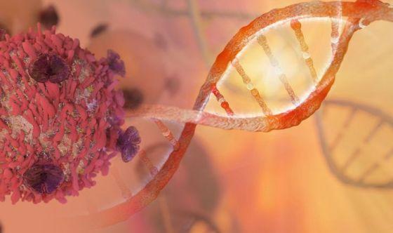 Tumori e batteri sono simili nel resistere alle cure